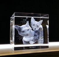 3D kristall med kattungar